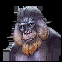 Evolution exclusive avatar